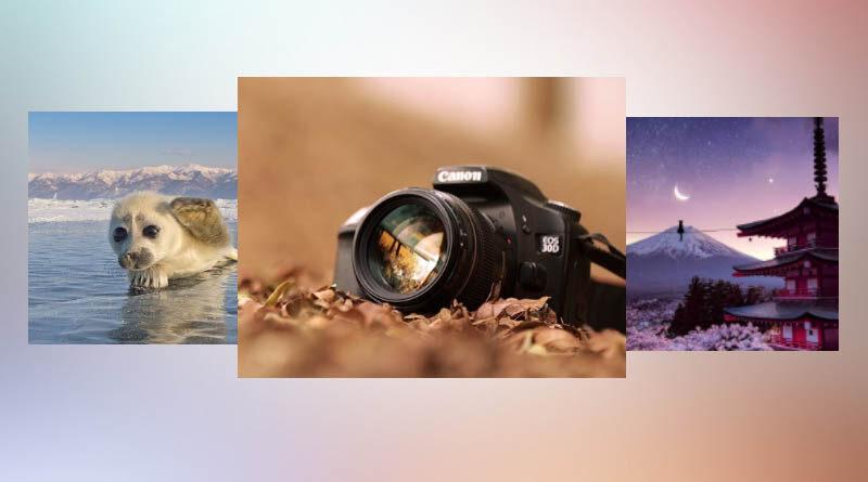 Как заработать деньги в интернете на продаже фотографий